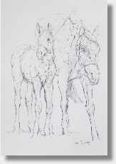 Mare and foal.  Ref.print010